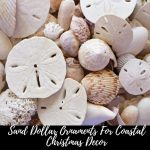 sand dollar christmas ornaments