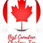 Canadian Christmas tree ornaments